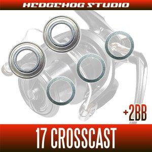 Photo2: 17 CROSS CAST  4000, 4000QD, 4500, 5000, 5500, 6000  Full Bearing Kit