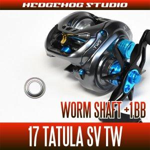 Photo1: [DAIWA] Worm Shaft Bearing kit for 17 TATULA SV TW (+1BB)