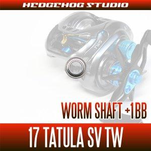 Photo2: [DAIWA] Worm Shaft Bearing kit for 17 TATULA SV TW (+1BB)