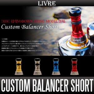 Photo1: [LIVRE] Custom Balancer Short *SPDACAP *SPSHCAP