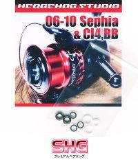 11-07 SEPHIA CI4, BB Line Roller 2 Bearing Kit Ver.1 【SHG】