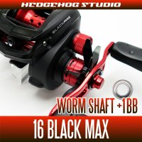 Worm Shaft +1BB Bearing Kit for 16 BLACK MAX
