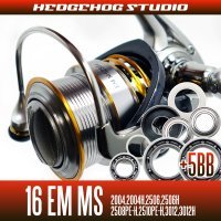 16 EM MS 2004,2004H,2506,2506H,2508PE-H,2510PE-H,3012,3012H用 MAX11BB Full Bearing Kit