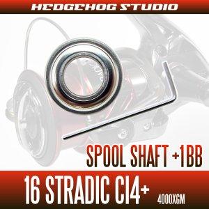 Photo2: 16 STRADIC Ci4+ 4000XGM Spool Shaft 1 Bearing Kit (L size)  [SHG]