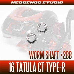 Photo2: [DAIWA] Worm Shaft Bearing kit for 16 TATULA CT TYPE-R (+2BB)