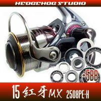 15紅牙MX 2508PE-H  Full Bearing Kit