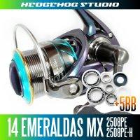 14EMERALDAS MX 2508PE,2508PE-H Full Bearing Kit