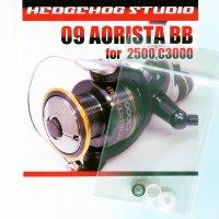 09 AORISTA BB 2500,C3000 Line Roller 1 Bearing Kit
