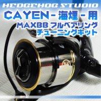 CAYEN 海煙 256 MAX12BB Full Bearing Kit