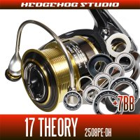 17 THEORY 2508PE-DH用 MAX14BB  Full Bearing Kit