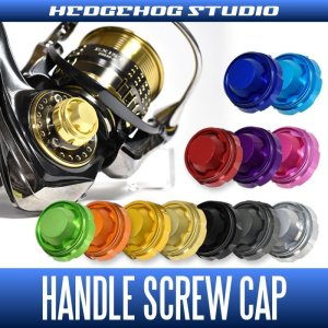 Photo1: HEDGEHOG STUDIO] Handle Screw Cap for SHIMANO 20 VANFORD [HSC-SD-A]