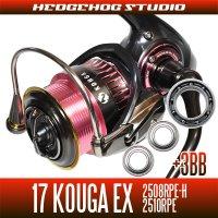 17 紅牙 KOHGA EX 2508RPE-H, 2510RPE  Full Bearing Kit