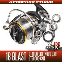 18 BLAST LT4000-CH, LT4000-CXH, LT5000D-CXH MAX10BB Full Bearing Kit
