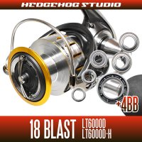 18 BLAST LT6000D, LT6000D-H MAX10BB Full Bearing Kit