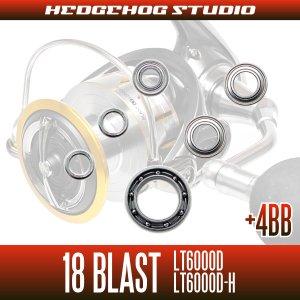 Photo2: 18 BLAST LT6000D, LT6000D-H MAX10BB Full Bearing Kit