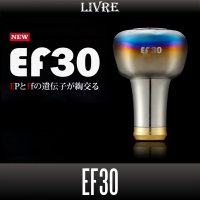 [LIVRE] EF30 Handle Knob *HKAL