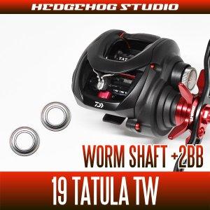 Photo1: [DAIWA] Worm Shaft Bearing Kit(+2BB) for 19 TATULA TW [Bass Fishing]