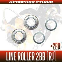 DAIWA Line Roller 1Bearing upgrade Kit  [RJ] (16 BLAST 4500,4500H,5000H)