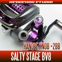 [ABU] Handle Knob Bearing Kit for SALTY STAGE BV8