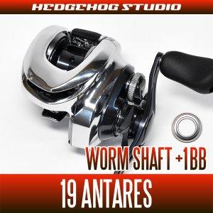 Photo1: [SHIMANO] Worm Shaft Bearing Kit for 19 ANTARES (+1BB)