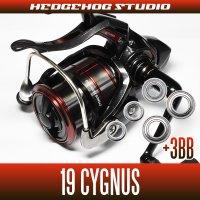 19 CYGNUS LBD 2500LBD, 2500H-LBD, 3000LBD, 3000H-LBD for MAX8BB full bearing tuning kit [surf fishing, Ukifukase fishing and the Grenadines, Medina]