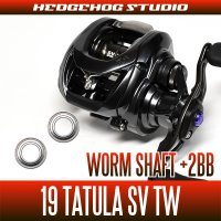 [DAIWA]  19 TATULA SV TW Worm Shaft Bearing  (+2BB)