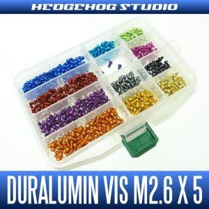 Photo1: Duralumin Screw for handle retainer (M2.6 x 5mm) - 1 piece
