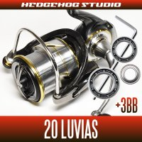 [Daiwa] 20 LUVIAS FC LT2000S, FC LT2000S-XH, FC LT2500S, FC LT2500S-XH, LT2500, LT2500-XH, LT3000-C, LT3000S-CXH, LT3000, LT3000-XH, LT4000-C, LT4000-CXH [Single handle model] for MAX12BB full bearing tuning kit