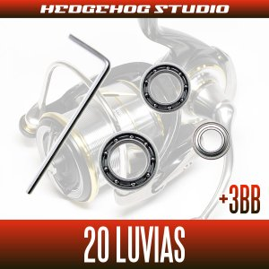Photo2: [Daiwa] 20 LUVIAS FC LT2000S, FC LT2000S-XH, FC LT2500S, FC LT2500S-XH, LT2500, LT2500-XH, LT3000-C, LT3000S-CXH, LT3000, LT3000-XH, LT4000-C, LT4000-CXH [Single handle model] for MAX12BB full bearing tuning kit