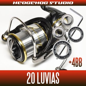 Photo1: [Daiwa] 20 LUVIASLT2500S-DH [double handle model] for MAX12BB full bearing tuning kit