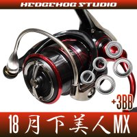 [DAIWA] 18 GEKKABIJIN MX(月下美人 MX) LT1000S-P, LT2000S-P, LT2000S MAX8BB Bearing Upgrade Kit