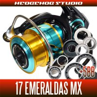 [DAIWA] 17 EMERALDAS MX 2508PE,2508PE-H MAX12BB Bearing Upgrade Kit