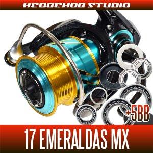 Photo1: [DAIWA] 17 EMERALDAS MX 2508PE,2508PE-H MAX12BB Bearing Upgrade Kit