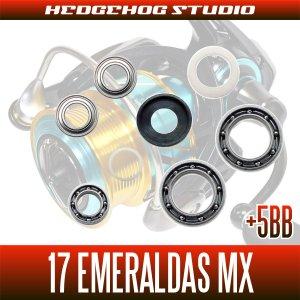 Photo2: [DAIWA] 17 EMERALDAS MX 2508PE,2508PE-H MAX12BB Bearing Upgrade Kit