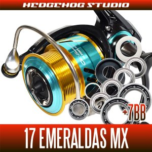 Photo1: [DAIWA] 17 EMERALDAS MX 2508PE-DH,2508PE-H-DH MAX14BB Bearing Upgrade Kit
