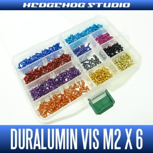 Photo1: Duralumin Screw (M2 x 6mm) - 1 piece