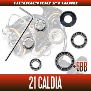 Photo2: [DAIWA] 21 CALDIA FC LT1000S,FC LT2000S,FC LT2000S-H,FC LT2500S,LT2500,LT2500S,LT2500S-XH,LT3000-CXH,LT3000,LT3000-XH,LT4000S-C,LT4000-CXH MAX11BB FullBearingKit
