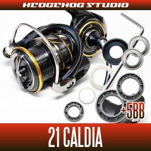 Photo1: [DAIWA] 21 CALDIA FC LT1000S,FC LT2000S,FC LT2000S-H,FC LT2500S,LT2500,LT2500S,LT2500S-XH,LT3000-CXH,LT3000,LT3000-XH,LT4000S-C,LT4000-CXH MAX11BB FullBearingKit