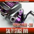 Photo1: [ABU] Handle Knob Bearing Kit for SALTY STAGE BV8 (1)